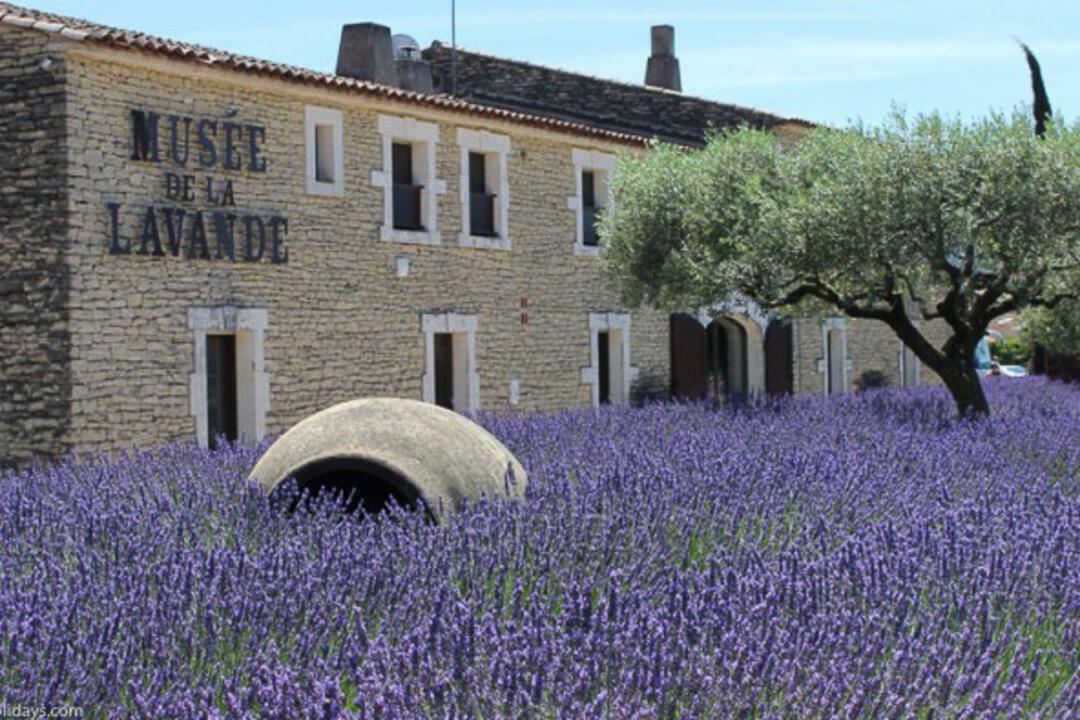 Museums / Art Galleries in Coustellet, Luberon : Musée de la Lavande