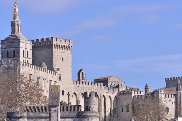 Heritage in Avignon, Avignon and surrounding area : Palais des Papes