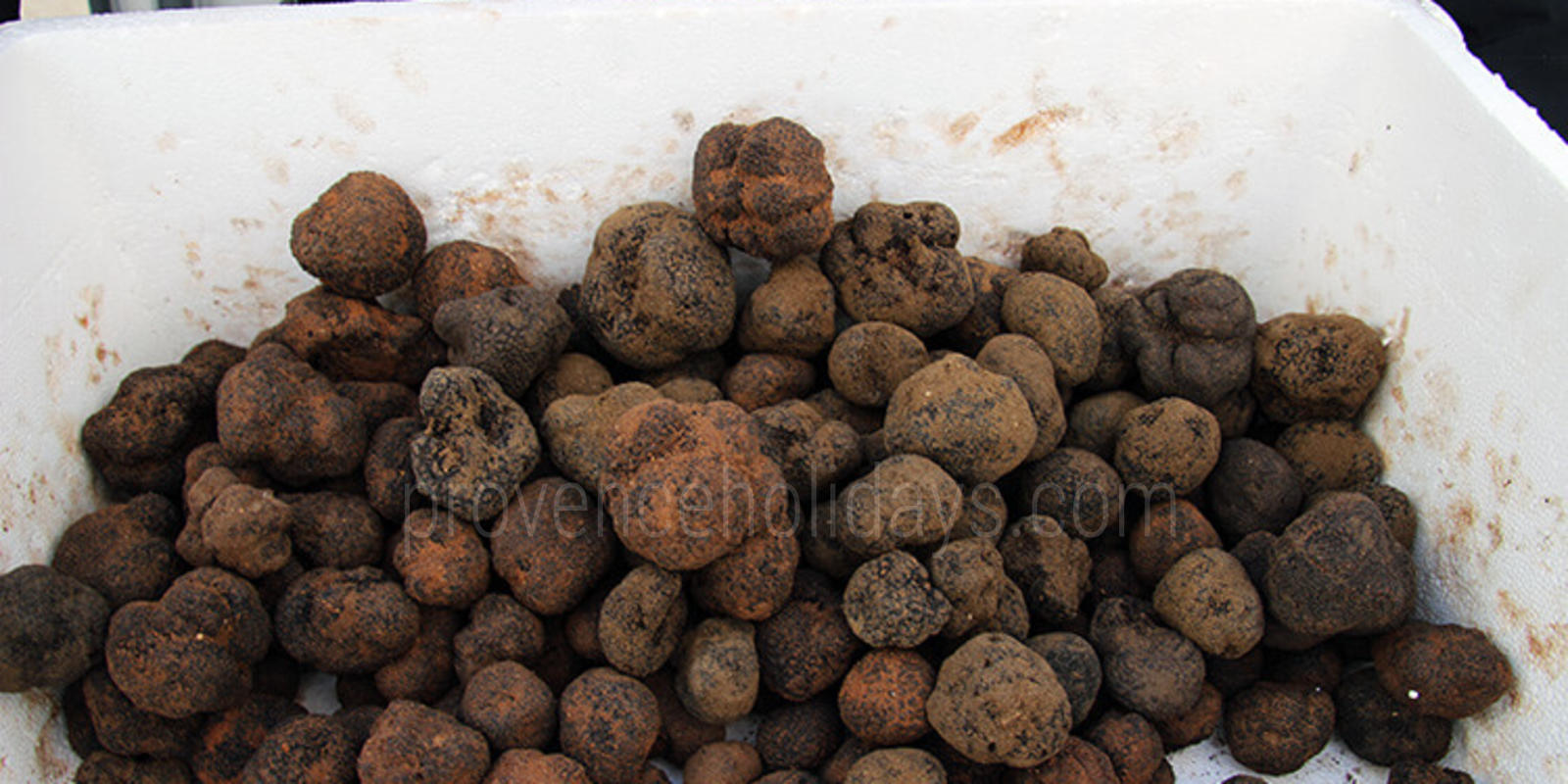 Richerenches truffle market - 0