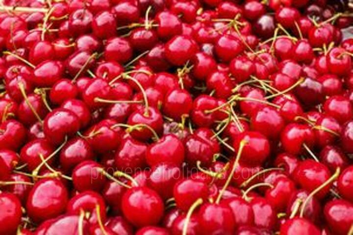 The cherries of the Venasque mountains