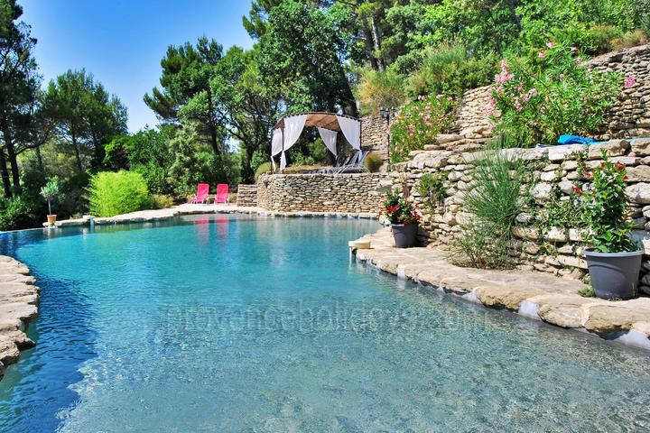 Bastide des Roches: Swimming Pool - 5
