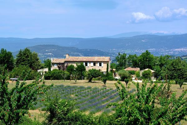 Pet-friendly Holiday Home in Apt in the Luberon