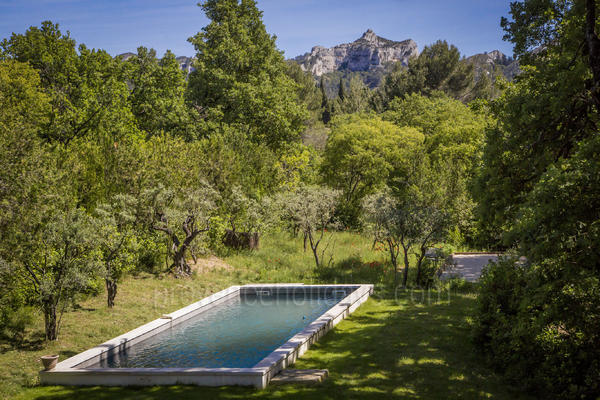 Chez Florette: Swimming Pool - 1