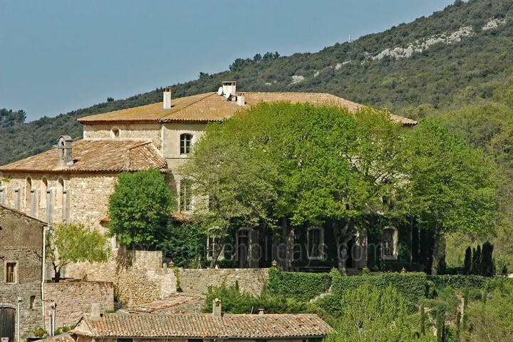 Beautiful Château sleeps 16 people in Provence